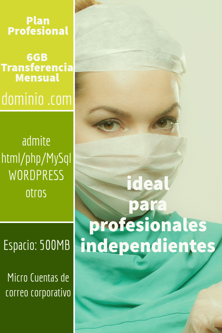 hosting colombia plan Profesional
